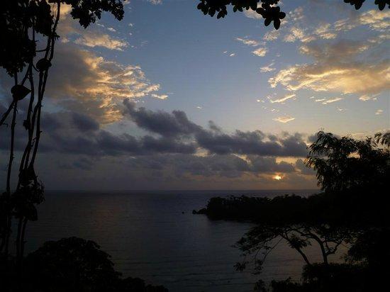 Geejam: Sunrise from Rocksteady