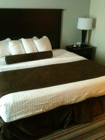 BEST WESTERN PLUS Chain of Lakes Inn & Suites: nice, comfy, firm king bed