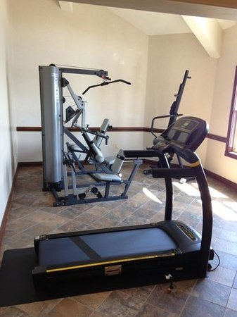 Oakwood Resort : fitness center with Precor and Livestrong machines