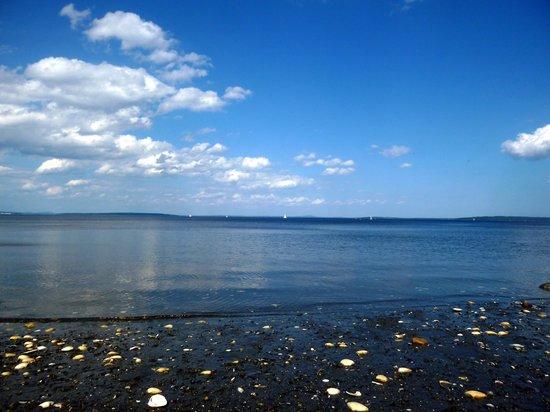 The calm bay