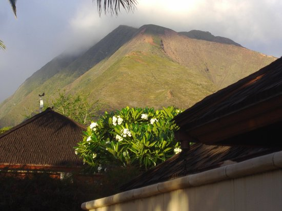 Ho'oilo House: View from the shower