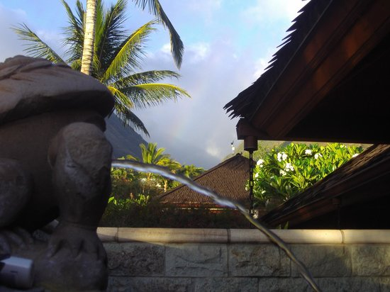 Ho'oilo House : shower stream and rainbow
