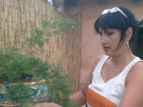 Il Girasole B&B: Rosanna