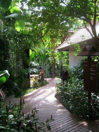 Chaweng Regent Beach Resort: Hotelanlage