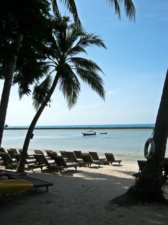 Chaweng Regent Beach Resort: Liegen am Strand