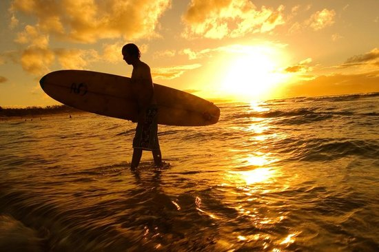 Corralejo Surf School - 1 Day Lesson