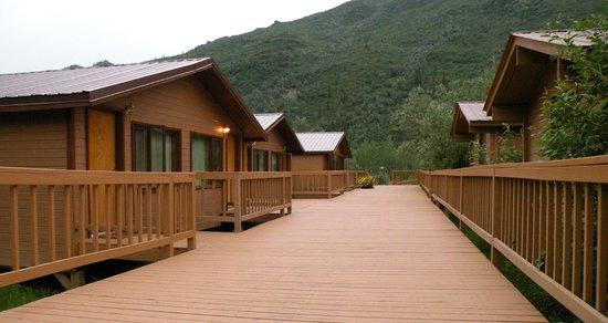 Denali Backcountry Lodge: Raised walkways between cabins make getting around the Lodge easy.