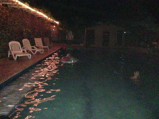 Casa Encinares Bed and Breakfast: The lovely pool - you can dive too!