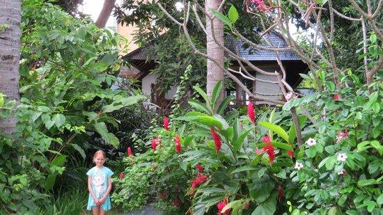 瑪爾奇莎別墅照片