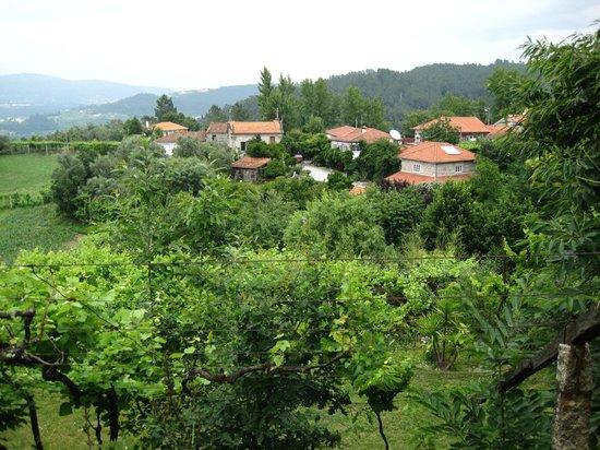 Quinta de Ribas : vue Propriete