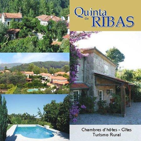 Quinta de Ribas : PhotosQuinta