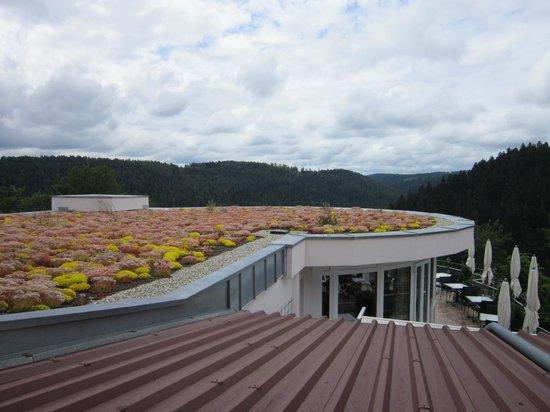 Berlins Hotel KroneLamm: Aussicht Zimmer 210 vom Balkon
