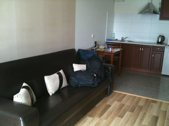 Cracow Stay Apartments: living room and kitchen