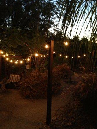 El Morocco Inn & Day Spa: Backyard