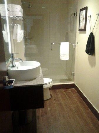 Northern Hotel: bathroom