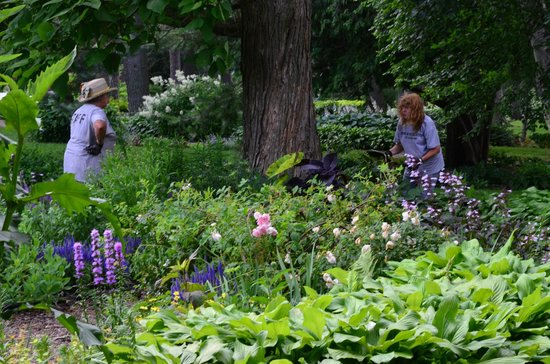 Munsinger Gardens: The wonderful people who make it happen
