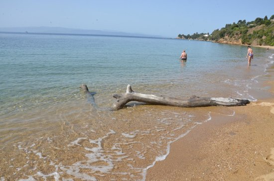 Skiathos Princess Hotel: Agia Paraskevi beach
