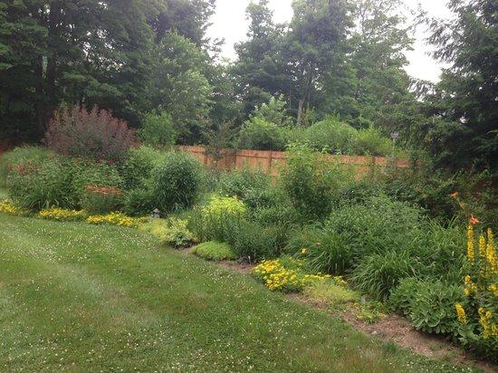 Harrington House : Garden