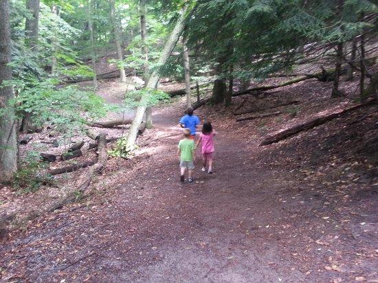 Hoffmaster State Park: Beautiful hiking