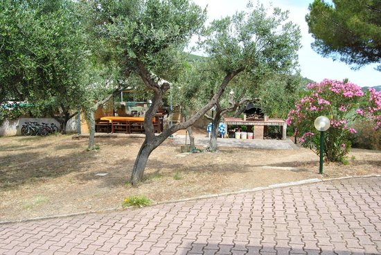 Residence Villa Conti: Grigliata time