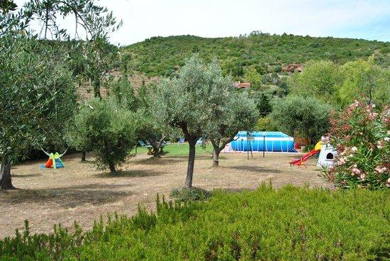 Residence Villa Conti: Vista dall'appartamento