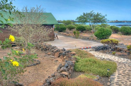 Floreana Lava Lodge: Best location in the Galapagos Islands