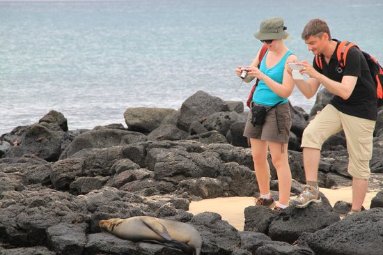 Floreana Lava Lodge: Galapagos Islands Wildlife