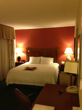Hampton Inn & Suites Albany Airport: King-size bedroom suite