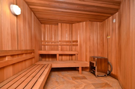 Comfort Inn & Suites: Sauna