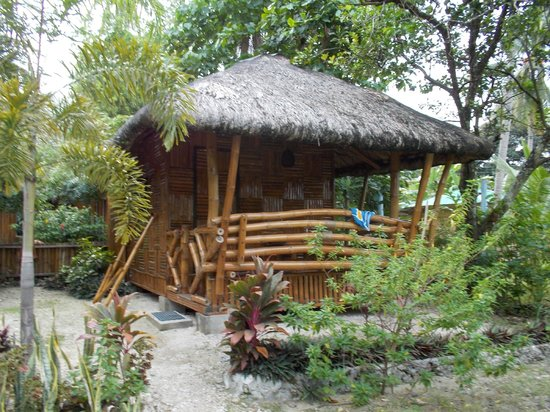 picture of island garden resort samal island