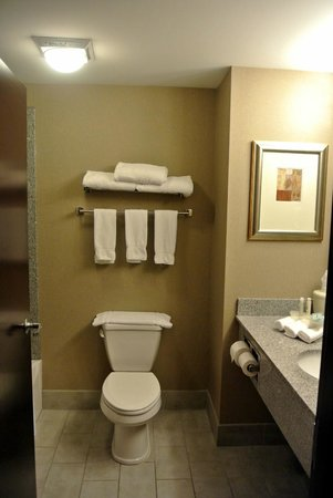 Holiday Inn Express Hotel & Suites Lebanon: The Bathroom