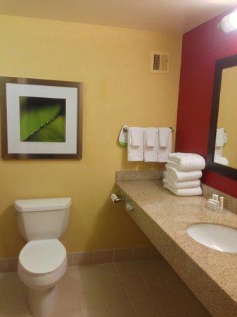 Courtyard Long Island MacArthur Airport: Bathroom