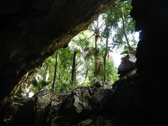 Tank-Ha Dive Center: Cenote Chac Mool 2