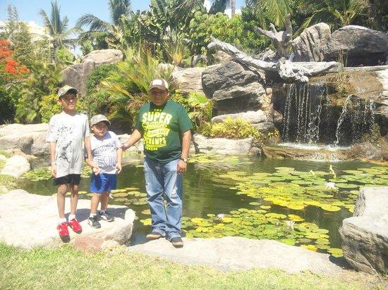 Hotel Playa Mazatlan: jardines del hotel