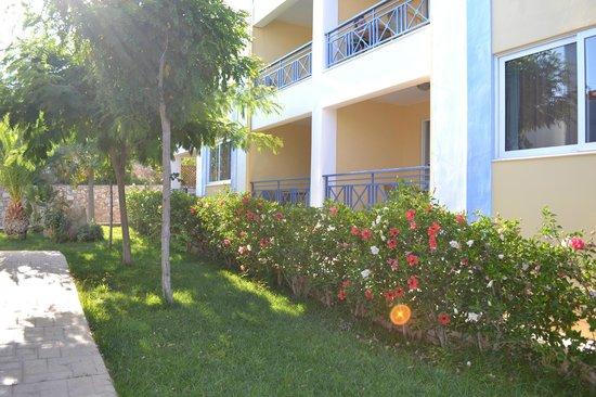 Colonides Beach Hotel: .