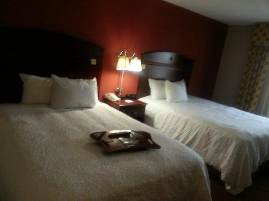 Hampton Inn Moss Point : Sleeping area