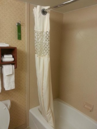Hampton Inn Moss Point : Bathroom
