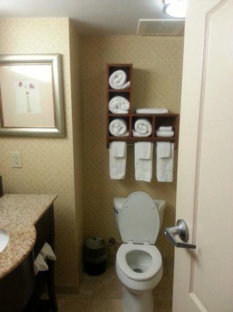 Hampton Inn Moss Point : This is the bathroom