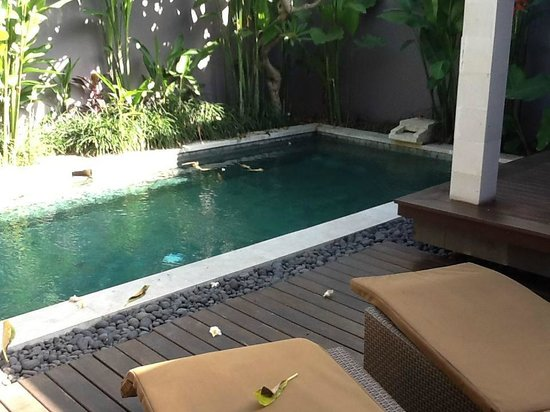 Aria Exclusive Villas and Spa: Pool area