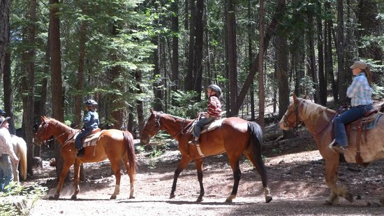 Greenhorn Creek Guest Ranch: On the trail