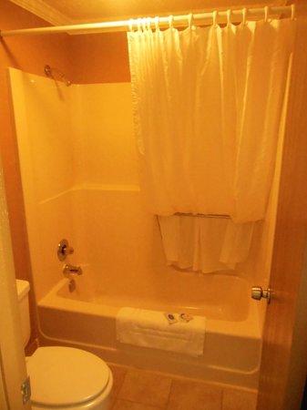 Wagner Inn : Bathroom