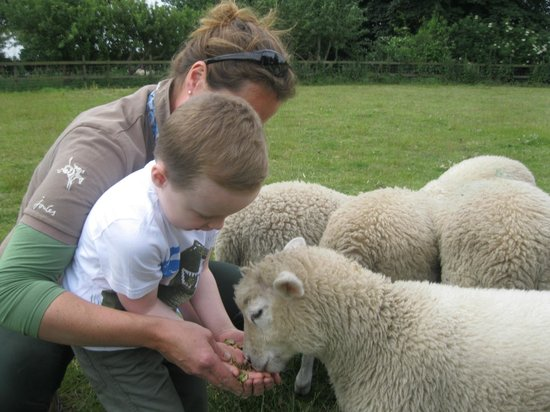 Feather Down Farms at College Farm: Farm tour