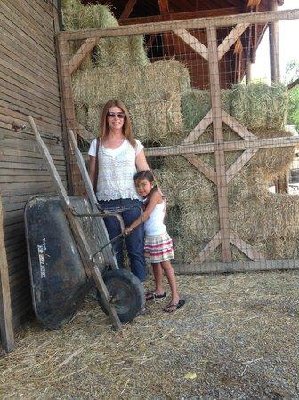 Wheeler Historic Farm: photo op