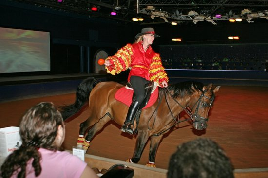 The Dancing Horses Theatre: Calypso