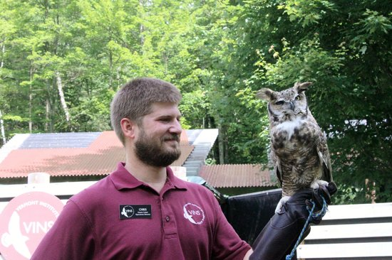 VINS Nature Center: The Great Horned Owl with his friend Chris