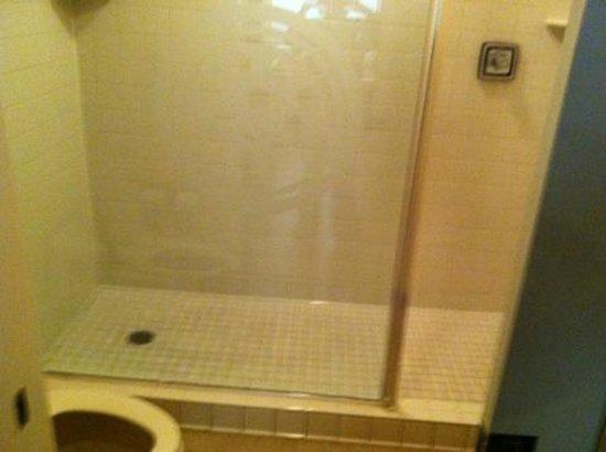 Orange Tree Golf Resort: walk in shower