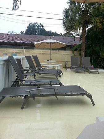 Venice Beach Villas: The best pool chairs