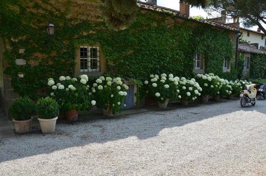 Villa di Piazzano: Charm & Elegance