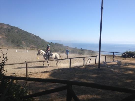Tenuta delle Ripalte: paardrijden met uitzicht op zee