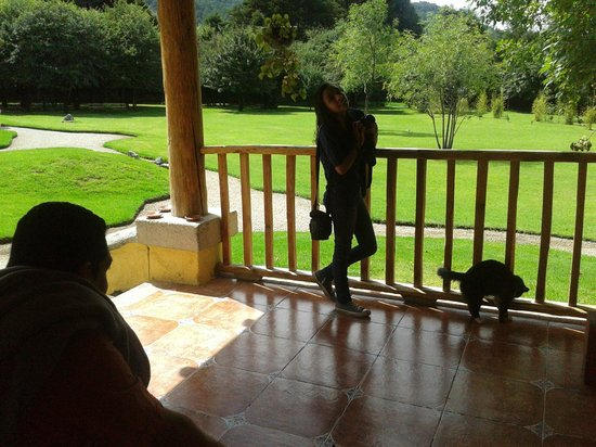 Hotel Bosques del Sol suites: El jardin